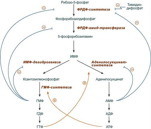 Схема регуляции синтеза