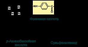 Механизм антивитамина В9. Строение сульфаниламида и парааминобензойной кислоты