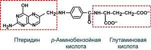Строение Фолиевая кислота